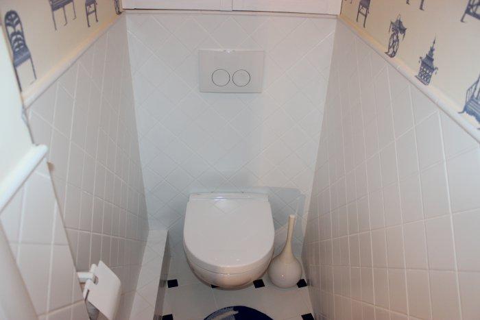 Дизайн керамической плитки в туалете фото